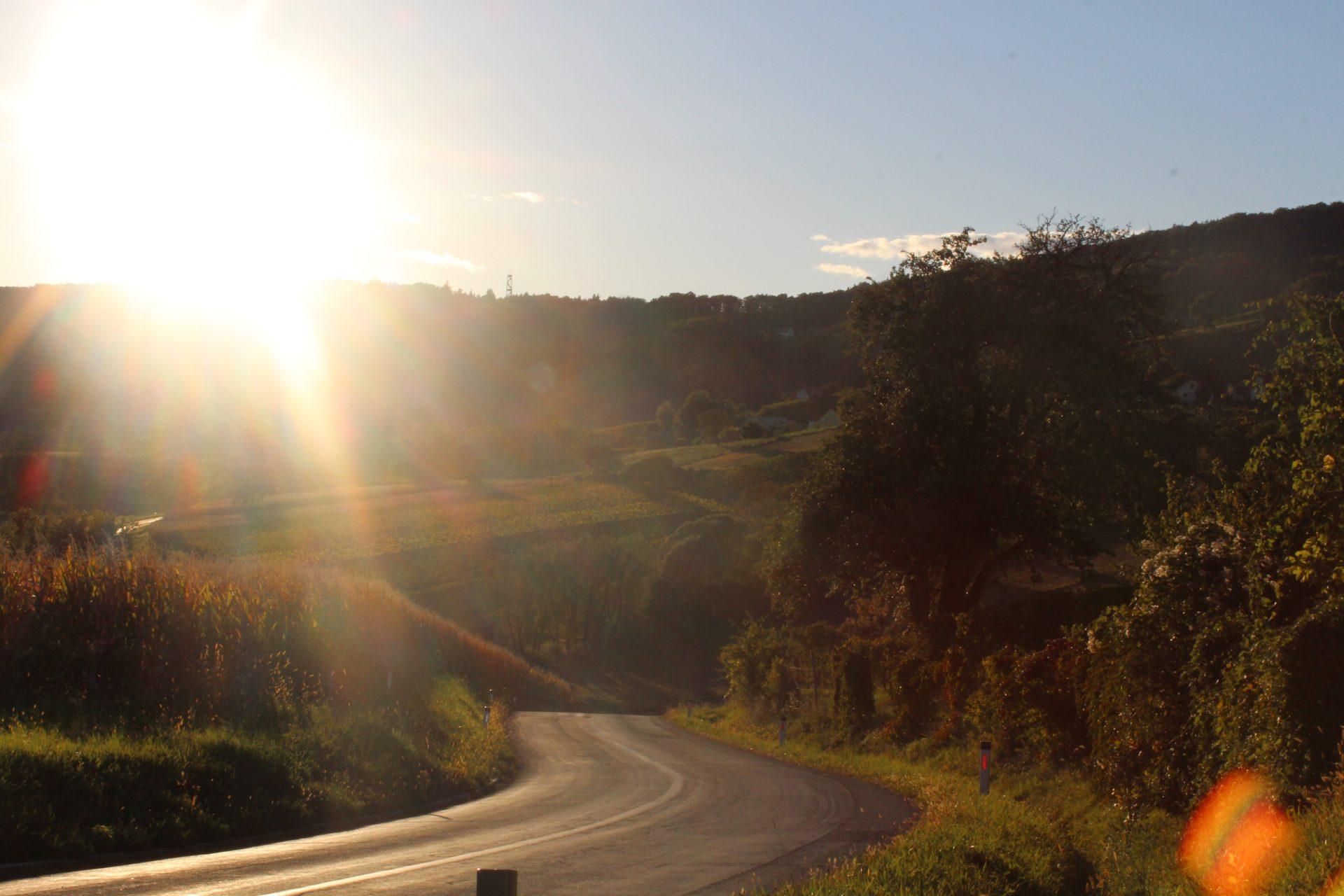 Serpentinen im Südoststeirischen Hügelland